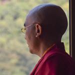 Eine Nachricht von Mingyur Rinpoche über die aktuellen Terroristischen Anschläge, 30. November 2015